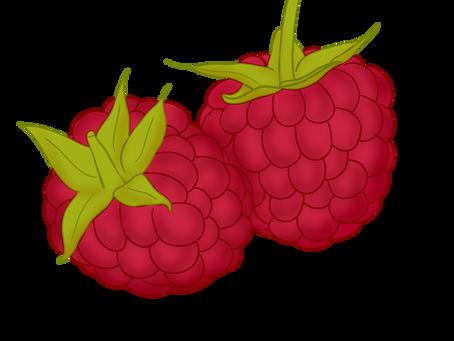 Fruit du mois de juillet
