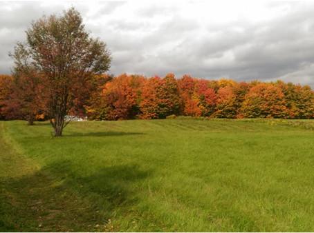 OCTOBRE-Cohabitat Neuville en «Zone Rouge»
