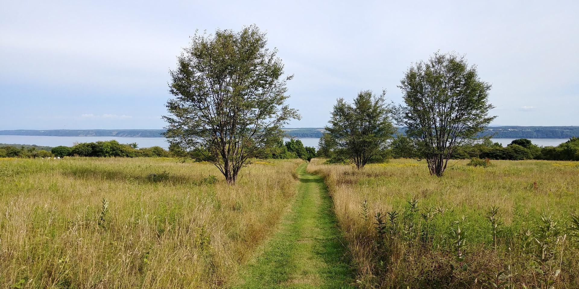 photo chemin CN.jpg