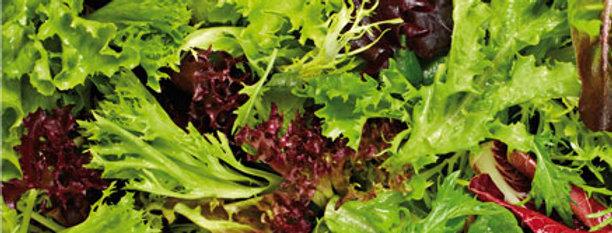 Био бейби листа микс Софина (салатки,спанак, рукола,кейл, листа цвекло) 1пакет