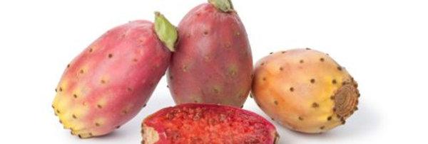 Кактус-смокиня 1брой