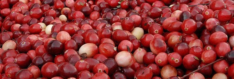 Боровинки червени горски 100гр.