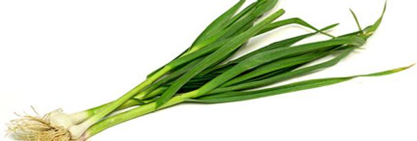 Био зелен чесън 1връзка Софина