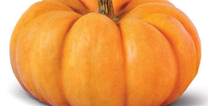Тиква оранжева 1брой около 4.8-5.5кг (1.20лв/1кг)