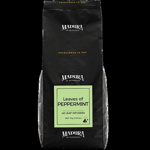 Tea Bags Madura Peppermint Silk Infuser 240pk