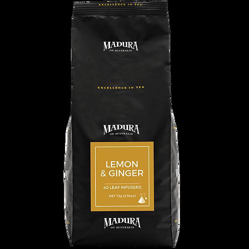 Tea Bags Madura Lemon & Ginger Silk Infuser 240pk