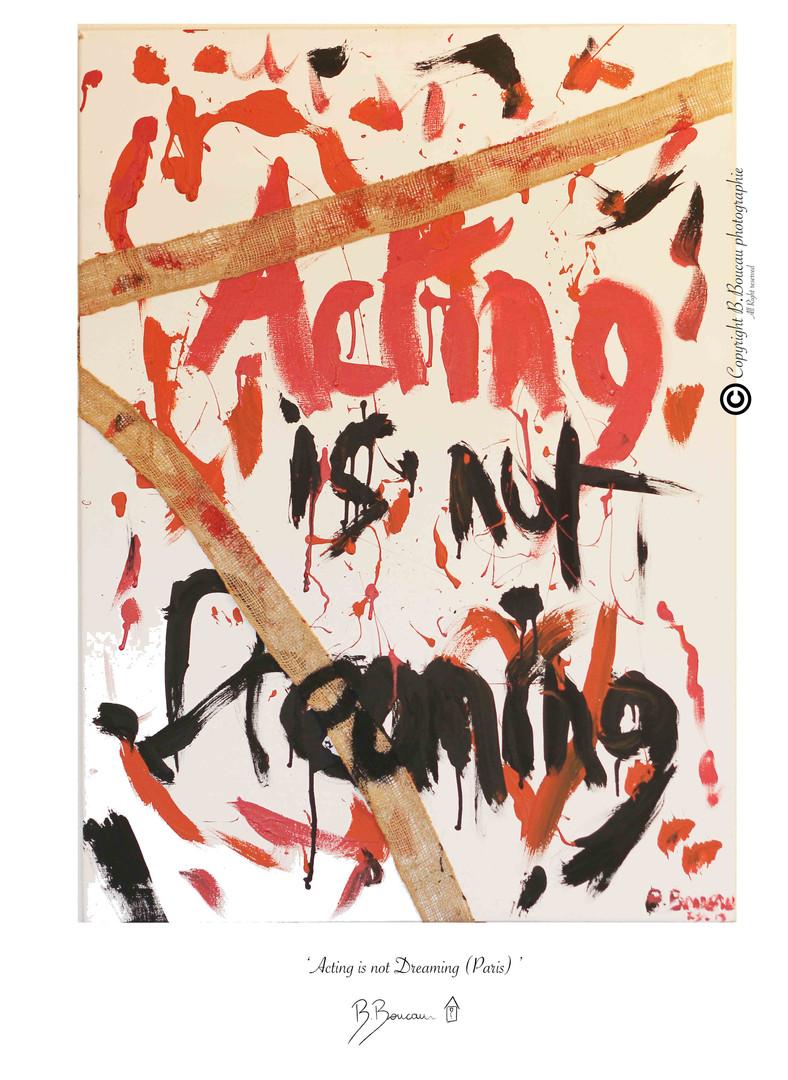 B. Boucau - Acting is not Dreaming (2013 Paris 73x100).jpg