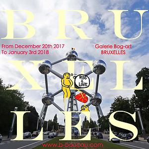 B.Boucau Bruxelles Expo Visu.png