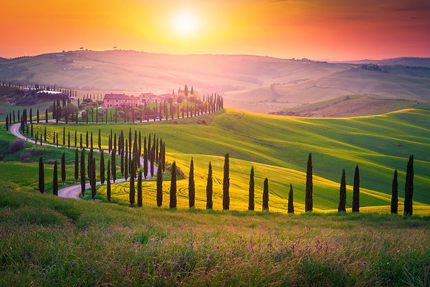 Well known Tuscany landscape with grain