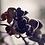 Thumbnail: Black Orchid
