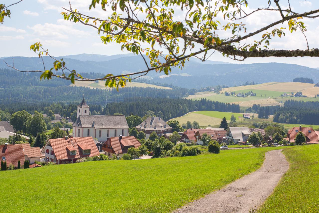 Blick_vom_Wanderweg_zum_Roßberg_übers_Dorf_Office_5586