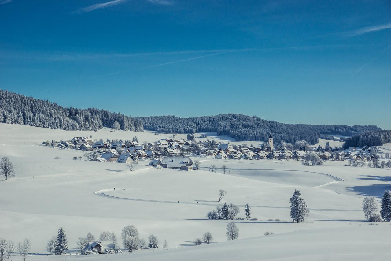 Blick auf Breitnau_Office_10015