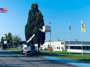 """Business Review: """"Wireless control of street lamps gives municipalities large energy savings"""""""