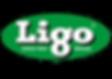 LIGO_LOGO_2019_WG.png