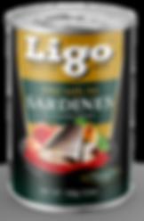 LIGO_STRUCTURE_PREMIUM_REG_155G.png