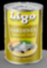 LIGO_STRUCTURE_SPANISH_155G.png