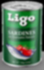 LIGO_STRUCTURE_MAIN_REG_155G.png