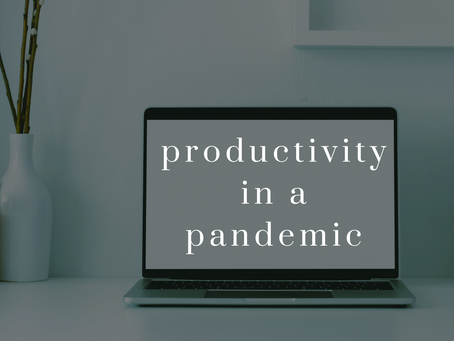 Productivity in a Pandemic