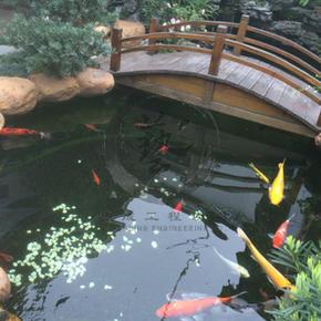 翠逸雅苑-日式魚池