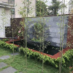 崇正新村-本部花園設計