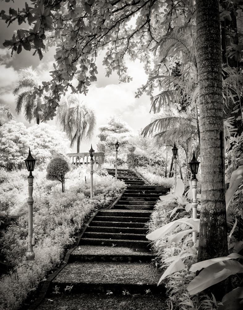 Nelson-Stairway to heaven.jpg