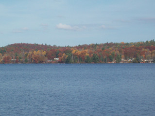 Experience the Mazinaw in the Fall