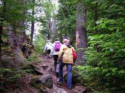 hiking-for-exercise.jpg