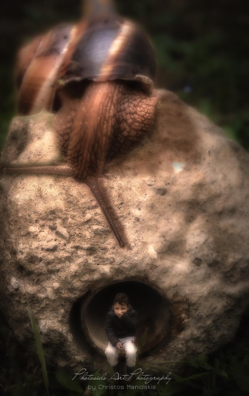 Snail Fear