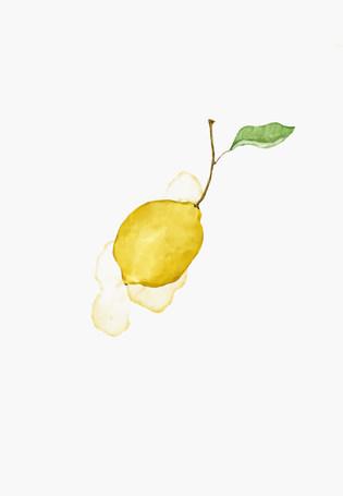 18 26 lemon.jpg