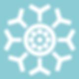 CAAIF Logo.png