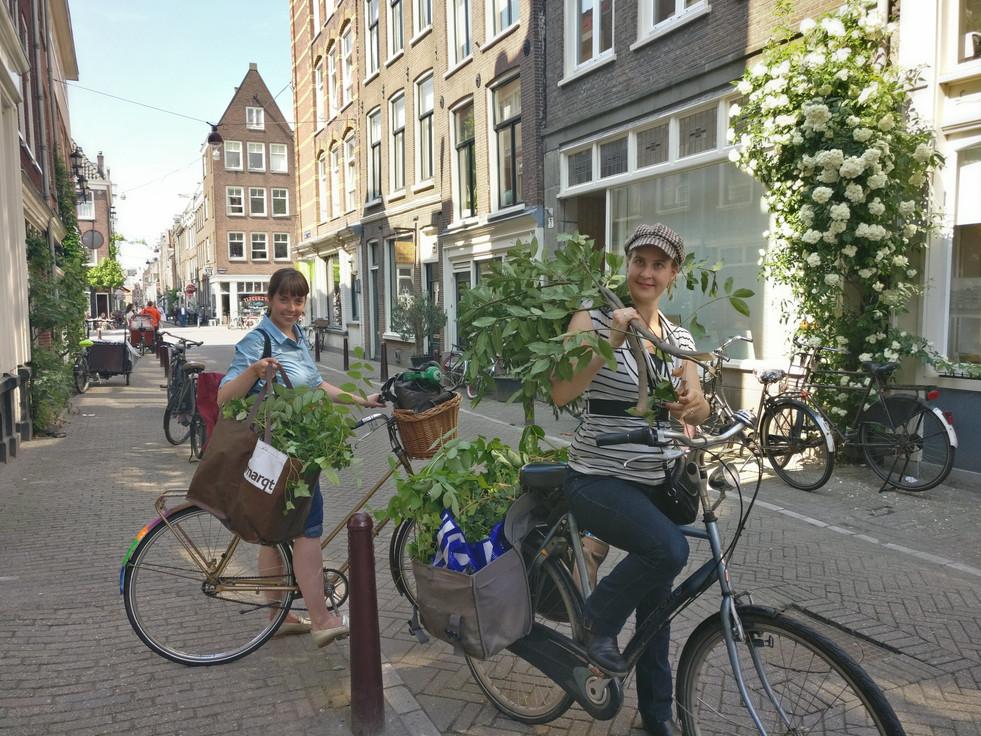 Set transport - Amsterdam Style