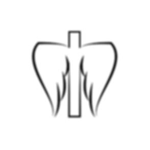 tkw-logo-v1-01.png