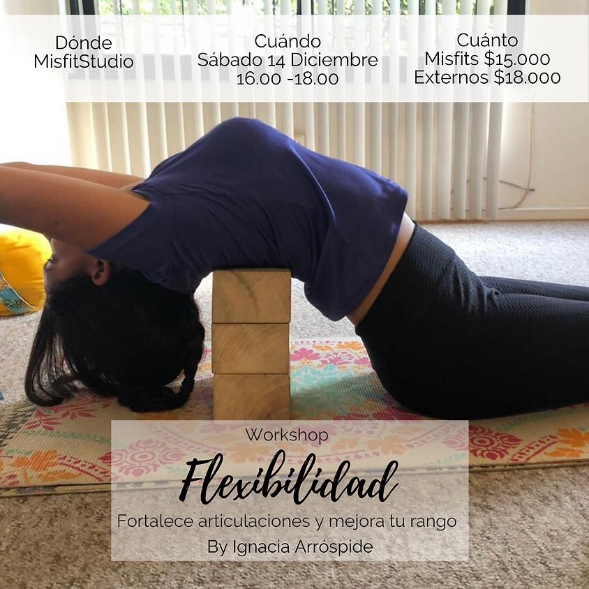 Workshop Flexibilidad