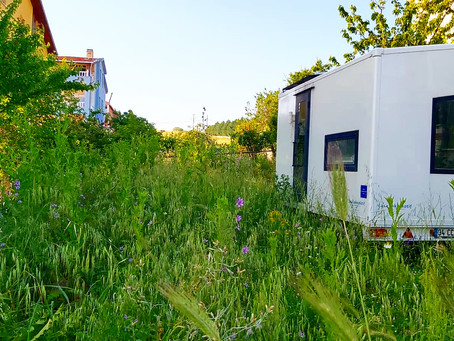Why is Tiny House movement so popular in Turkey?
