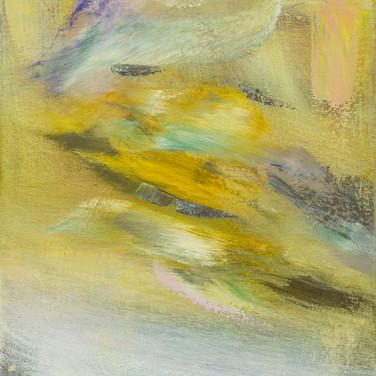 White Dove, 14 x 11, Oil on canvas