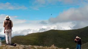 Parque Cumbres Calchaquíes: un santuario para el estudio de los cóndores