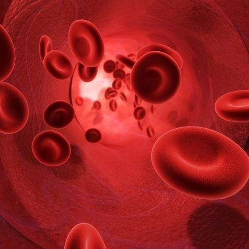 Glóbulos rojos sintéticos