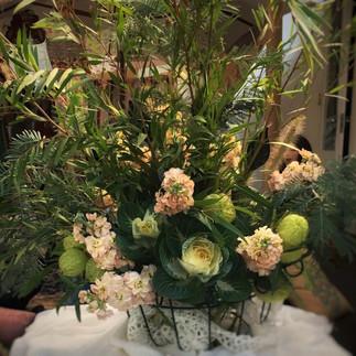 Stephanie Belle Botanical with Kingdom Creations