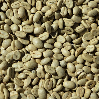 Coffee green beans