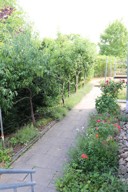 Gartenzuweg
