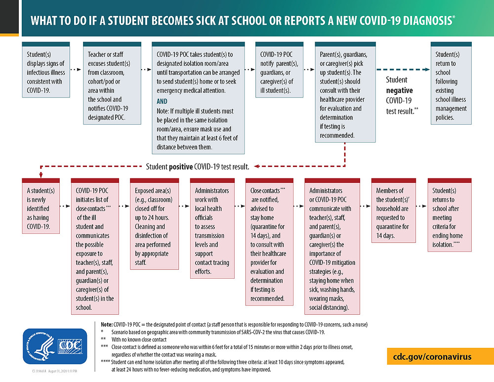 A flowchart from the CDC stating what to do if a student becomes sick at school or reports a new COVID-19 diagnosis