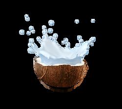 milk splash 2.png