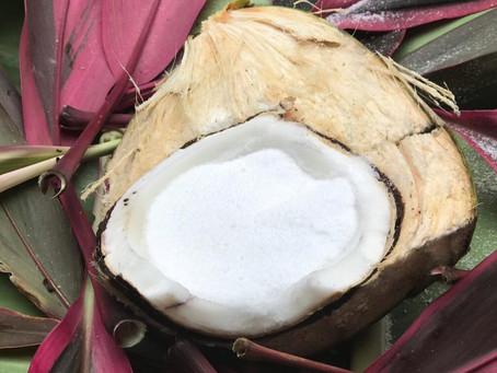 A Guide to Covico Coconut Milk and Cream Powders