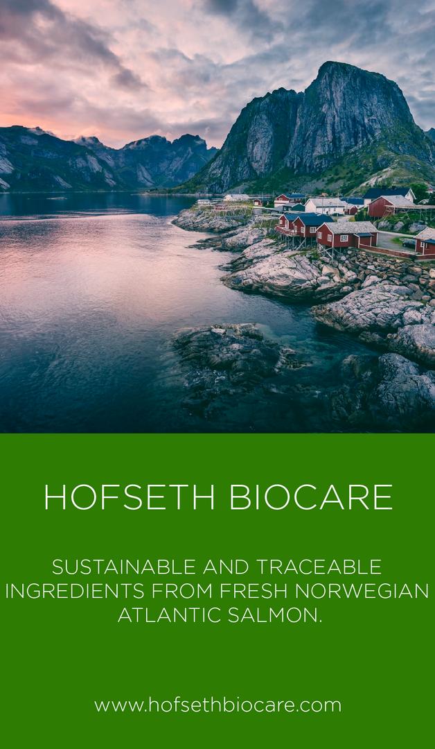 Hofseth Brand Card.png