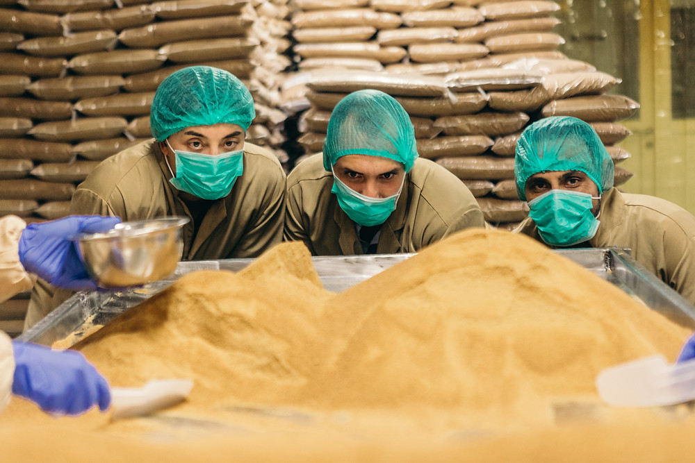 Coconut Sugar being inspected at the Covico evaporated coconut sugar facility on the island of Java, Indonesia.