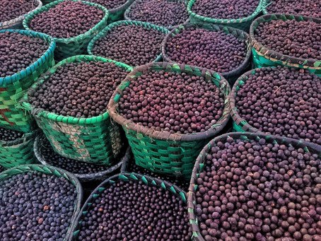 Superfruit Spotlight: Açaí