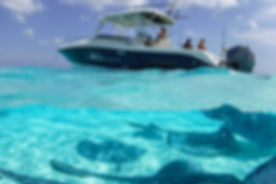 stingray city private boat charter cayman islands