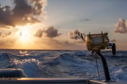 Sunrise Wahoo fishing
