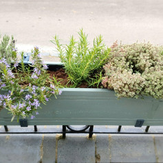 Fence planter