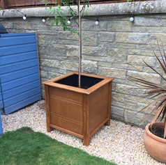 wooden tree planter